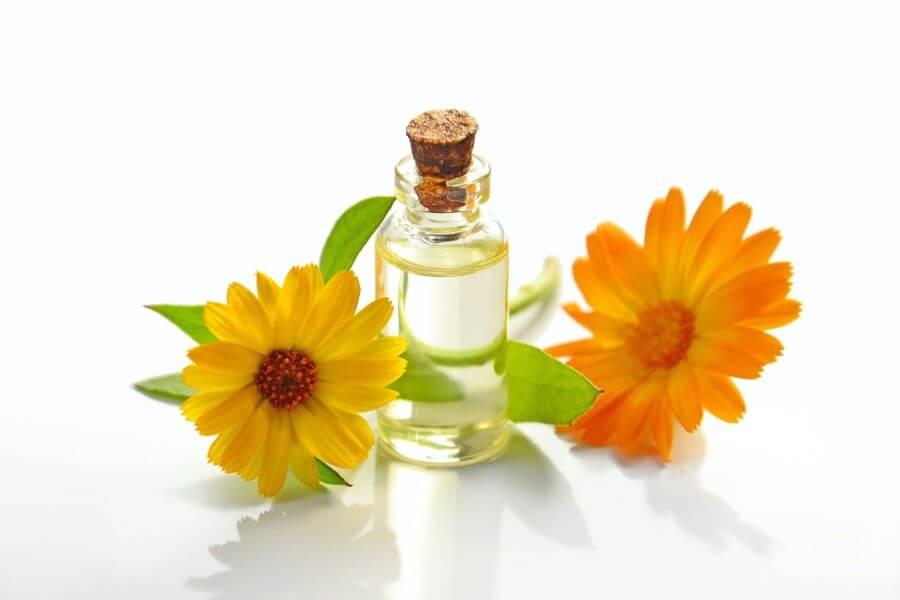 Top tri biljke za njegu kože